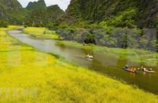 Impresionante inicio de la Semana del Turismo Ninh Binh 2020