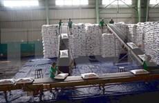 Premier vietnamita insta a aumentar el apoyo a las empresas en medio de pandemia