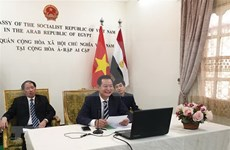 Realizan en Egipto seminario en línea sobre el Presidente Ho Chi Minh