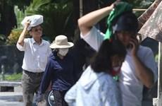 Reiteran atención del Gobierno vietnamita a pronóstico meteorológico