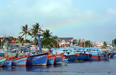 Elaboran planificación del sistema de puertos de pesca en Vietnam
