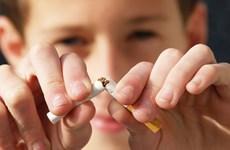 Lanzan en Vietnam concurso online sobre prevención del consumo de tabaco