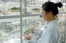 Emite Vietnam plan de desarrollo de ciencia y tecnología para impulsar la economía