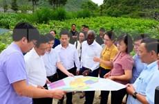 Banco Mundial recomienda políticas a Vietnam para una economía de alto ingreso