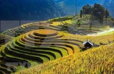 """Promueve Vietnam Premio fotográfico """"Heritage - Viaje patrimonial"""" 2020"""