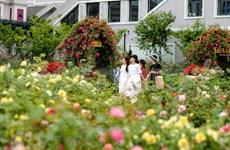 Encuesta muestra perspectivas favorables del turismo nacional de Vietnam