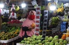 Indonesia registra su tasa de inflación más baja en las últimas dos décadas