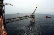 Empresa petrolera de Vietnam totaliza nueve millones de toneladas en cinco meses