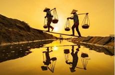 Reportero vietnamita gana certificado honorifico en concurso fotográfico internacional