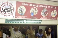 Estalla epidemia de dengue en Singapur