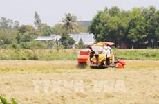Vietnam por acelerar la mecanización de la agricultura e industria de procesamiento