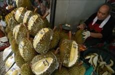 Tailandia desarrolla cajas a prueba de olores para almacenar durián