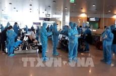 Repatrian a más de 300 ciudadanos vietnamitas desde Suecia y Finlandia