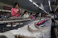 Vietnam prepara su capacidad de protección comercial