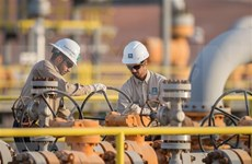 Empresa saudí se retira del proyecto de refinería de petróleo en Indonesia