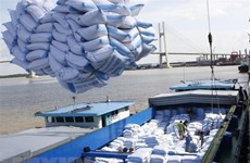 Destacan oportunidades del EVFTA para empresas vietnamitas y europeas