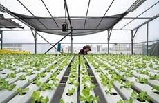 Singapur y Francia acuerdan facilitar el comercio de productos agrícolas