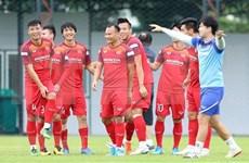 Fútbol: Vietnam y Malasia disputarán eliminatoria mundialista en octubre próximo