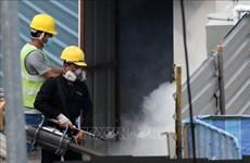 Aumentan repentinamente a más de 10 mil los casos de dengue en Singapur