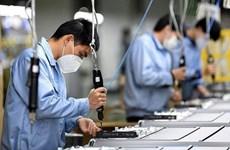 Estudian en Vietnam el desarrollo empresarial en etapa pospandémica