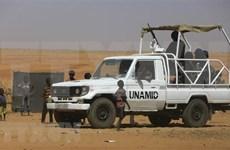 Vietnam apoya garantizar justicia como pilar de la transición en Sudán
