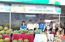 Estimulan en Hanoi consumo doméstico de productos agrícolas y frutales