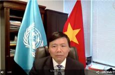 Vietnam e Indonesia piden resolver causas profundas de inestabilidad en África Central