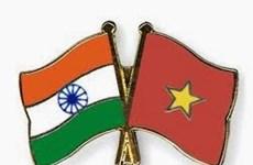 Destaca desempeño de diplomacia pública en cooperación Vietnam - India
