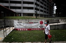 Con 895 casos, Singapur alcanza récord semanal de infectados de dengue