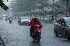 Pronostican intensas lluvias por tifón Nuri en provincias norteñas de Vietnam