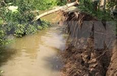 Ciudad vietnamita de Can Tho busca mejorar lucha contra erosión