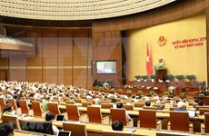 Ratifica Parlamento vietnamita la Ley Empresarial (modificada)