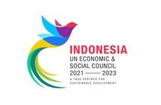 Elegida Indonesia como miembro de ECOSOC