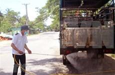 Ocho empresas vietnamitas elegibles para importar cerdos de Tailandia