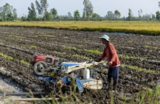 Necesidad urgente para la modificación de la legislación fiscal sobre fertilizantes