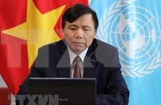 Vietnam exhorta a garantizar éxito de repatriación y reinserción de refugiados