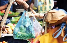 Provincia vietnamita busca mejorar gestión de residuos sólidos y plásticos