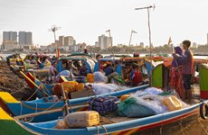 Reducción del nivel hídrico en Camboya afecta a población de peces