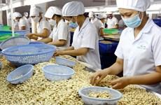 Vietnam figura entre los 10 principales centros de procesamiento agrícola del mundo