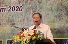 Buscan mejorar gestión y protección forestal en Altiplanicie Occidental de Vietnam