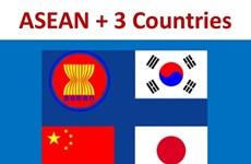 ASEAN y socios acuerdan elevar eficiencia del acuerdo multilateral sobre divisas