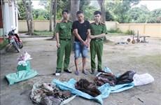 Detectan en Vietnam caso de transportación ilegal de animales silvestres