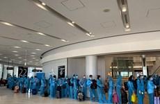 Repatrían a ciudadanos vietnamitas varados en Japón