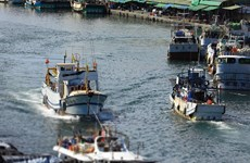 Crean grupo de trabajo sobre gestión pesquera en Océano Índico