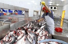 Industria acuícola de Vietnam dispone de ventajas para desarrollo, según especialistas