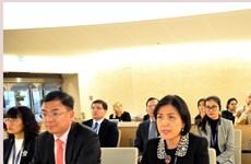 Consejo de la ONU adopta documentos para promover los derechos humanos