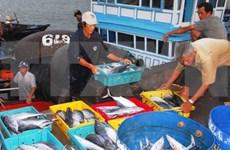 Aumenta producción acuícola de Vietnam en primera mitad de 2020