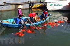 Lanzan en Vietnam concurso de videos sobre protección medioambiental