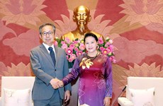Vietnam y Japón desarrollan sus nexos con alta confianza política
