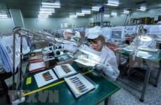 Superávit comercial de Vietnam alcanza cuatro mil millones de dólares en primera mitad del año